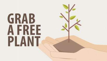 grab a free plant (1)